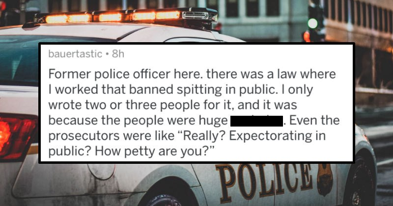 Police officers share stories of the stupidest laws they've enforced just because someone was being a proper jerk.