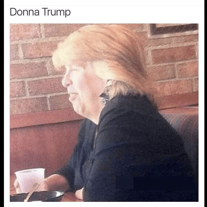 funny meme of woman that looks like Donald Trump, captioned Donna Trump