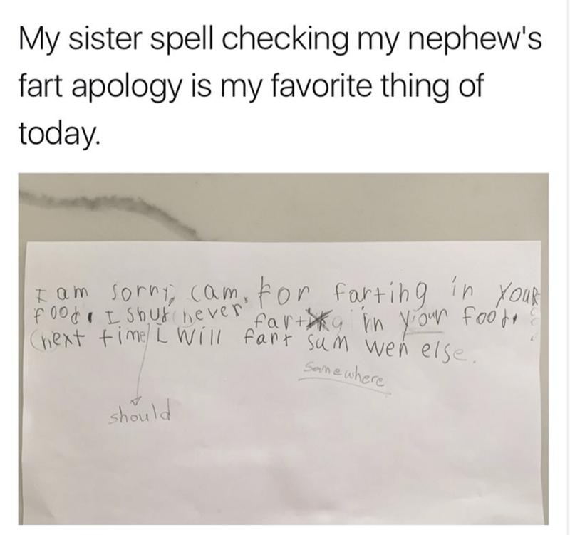 meme of sister spell checking a fart apology