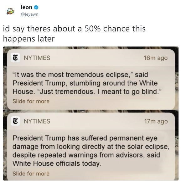 tweet joking that there is 50% chance of NY times headline about trump going blind from staring at the sun too long