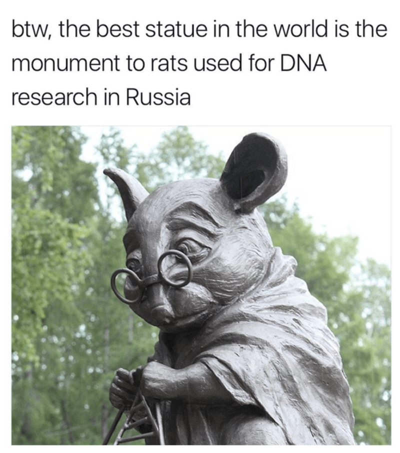 funny meme about a monument dedicated to experimenting on animals