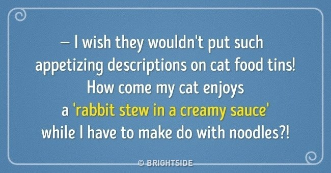 they should change cat food labels