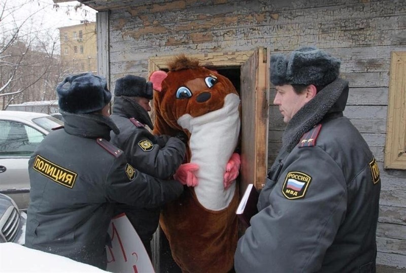 cops pushing a furry into a shack