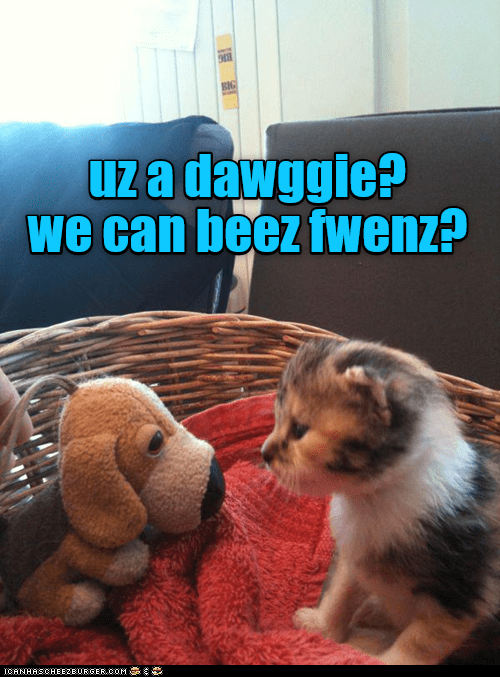 Canidae - 1Za dawggie? we can beez fwenz? CANHASCHEE2EURGER cOM