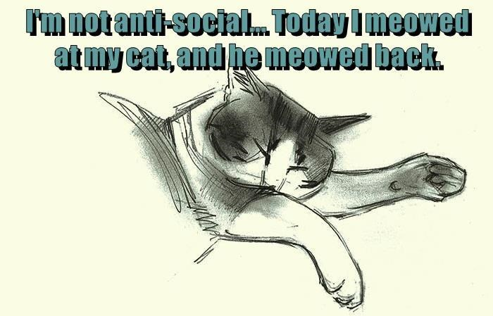 Text - m notanti-socia.. Today I meowed atmy cat, and he meowed back.
