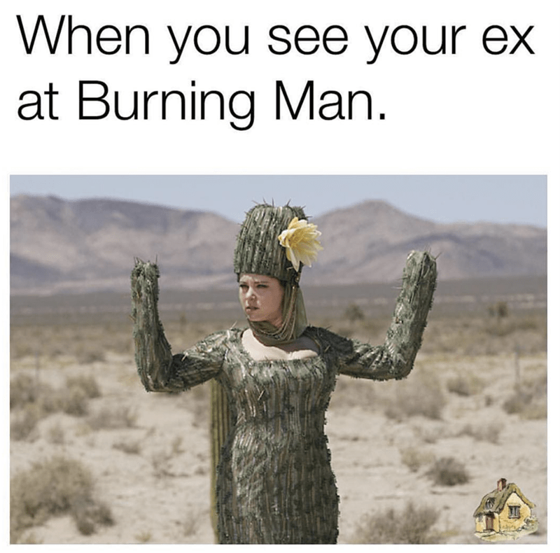 Adaptation - When you see your ex at Burning Man.