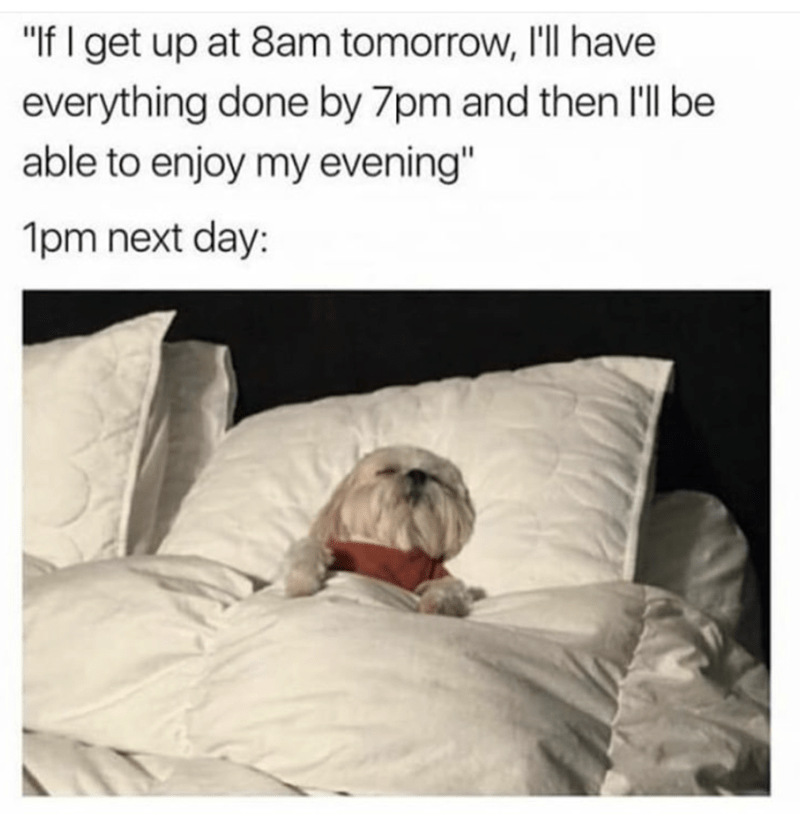 """Product - """"If I get up at 8am tomorrow, I'll have everything done by 7pm and then l'll be able to enjoy my evening"""" 1pm next day:"""