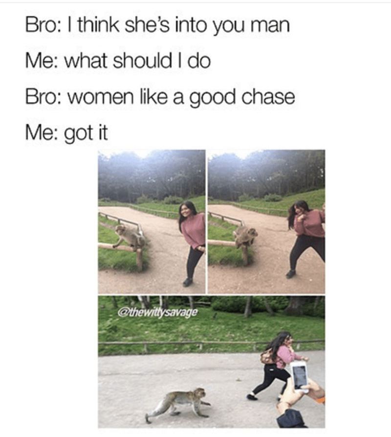 Cani cross - Bro: I think she's into you man Me: what should I do Bro: women likea good chase Me: got it @thewitysavage