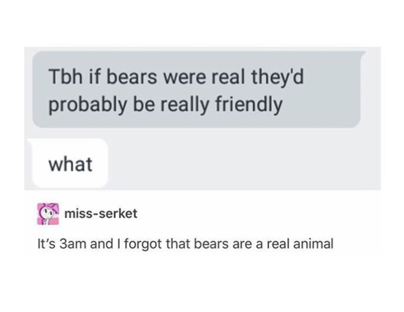 Text - Tbh if bears were real they'd probably be really friendly what miss-serket It's 3am and I forgot that bears are a real animal