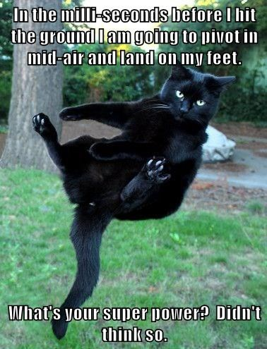 Funny meme of cat whose super powers is having cat like reflexes, what is yours?