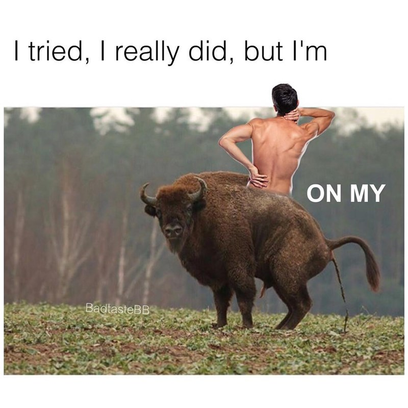 Bovine - I tried, I really did, but I'm ON MY BadtasteBB