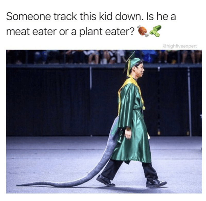 funny meme with pic of guy in graduation gown with a dinosaur tails attached to his back
