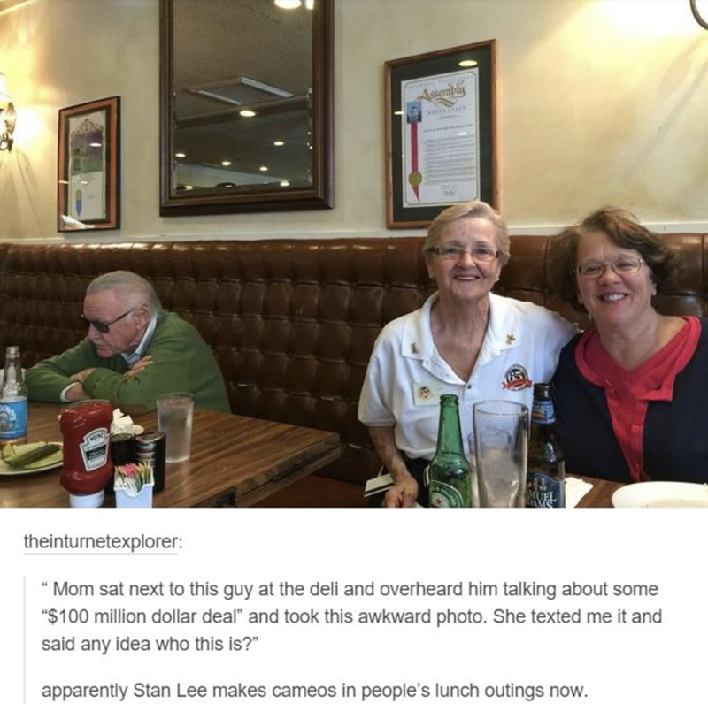 funny meme about Stan Lee making cameos in real life