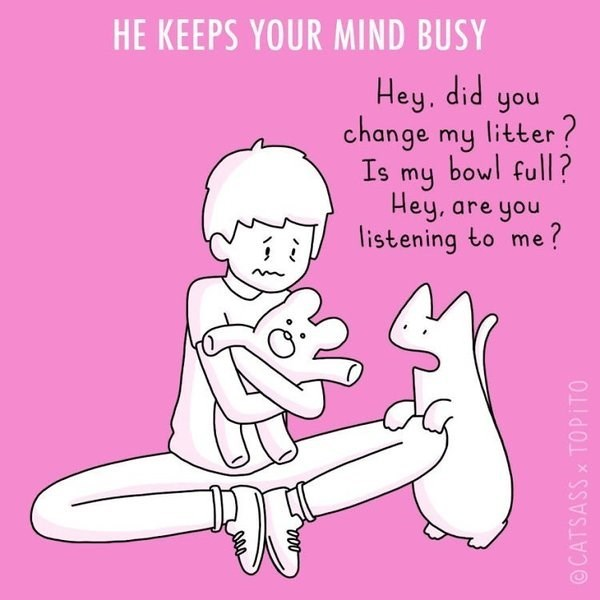 Text - HE KEEPS YOUR MIND BUSY Hey, did change my litter ? bowl full? you Is my Hey, are you listening to me ? OCATSASSX TOPITO