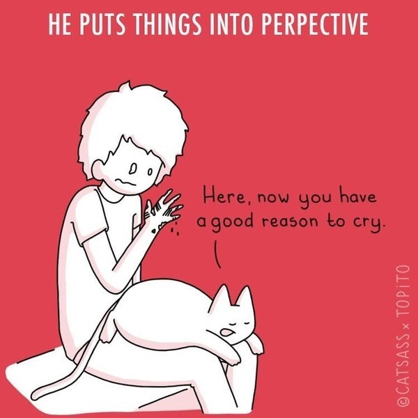 Text - HE PUTS THINGS INTO PERPECTIVE Here, now you have a good reason to cry. ©CATSASS x TOPITO