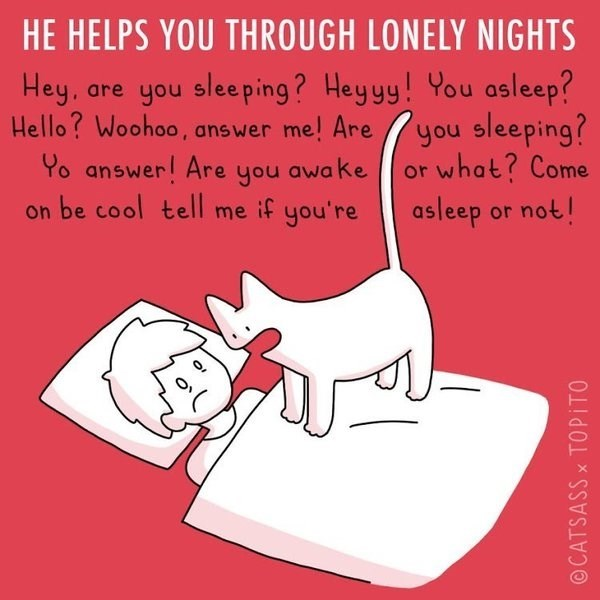 Text - HE HELPS YOU THROUGH LONELY NIGHTS Hey, are you sleeping? Heyyy! You asleep? you sleeping? or what? Come asleep or not! Hello? Woohoo, answer me! Are Yo answer! Are on be cool tell me if you're you awake OCATSASSX TOPITO