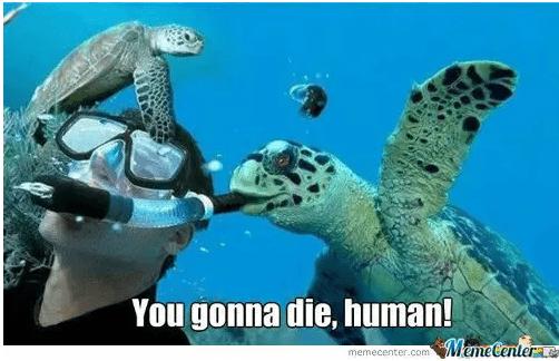 Sea turtle - You gonna die, human! Mame Centerae memecenter.com