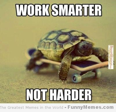 Tortoise - WORK SMARTER NOT HARDER The Greatest Memes in the World FunnyMemes.com Funnymeme.