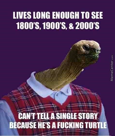 Adaptation - LIVES LONG ENOUGH TO SEE 1800'S, 1900'S, & 2000'S CANT TELLA SINGLE STORY BECAUSE HE'S A FUCKING TURTLE MemeCenter.com
