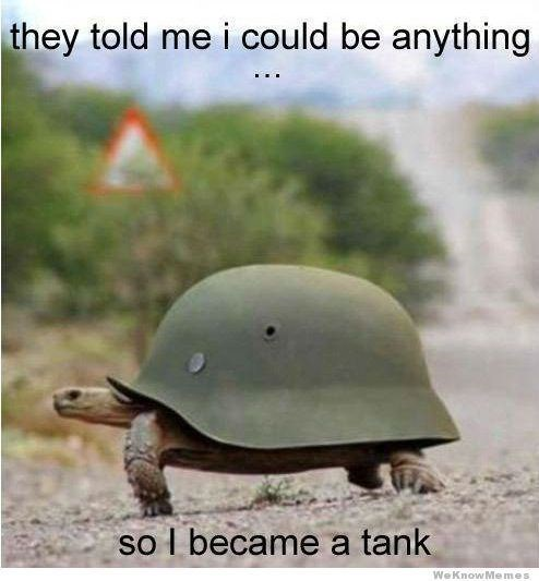 Tortoise - they told me i could be anything so I became a tank WeKnowMemes
