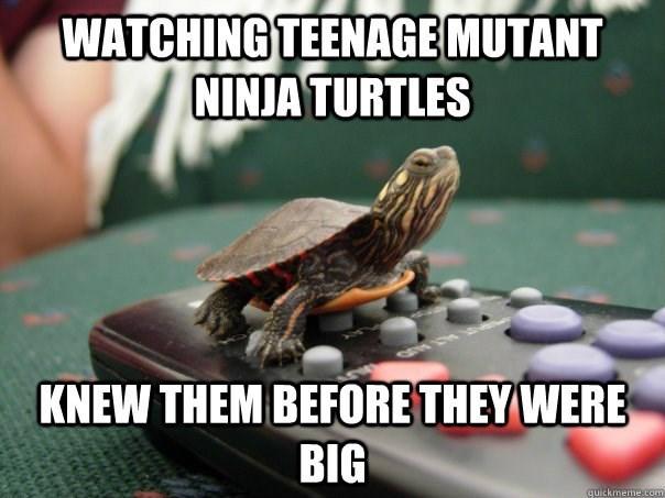 Turtle - WATCHING TEENAGE MUTANT NINJA TURTLES KNEW THEM BEFORE THEY WERE BIG quickmeme.com