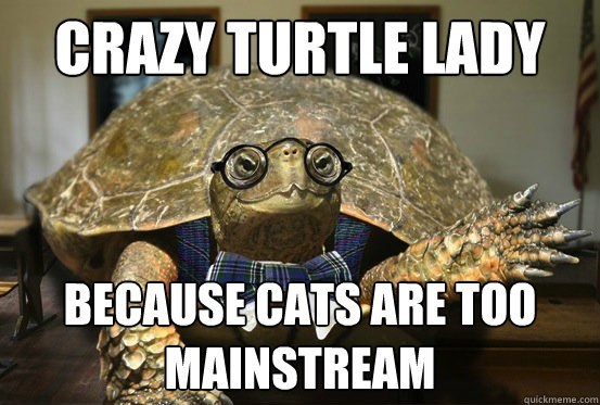 Turtle - CRAZY TURTLE LADY BECAUSE CATS ARE TOO MAINSTREAM quickmeme.com