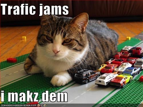 Cat - Trafic jams i makz dem ICANHASCHEEZEURGER COM