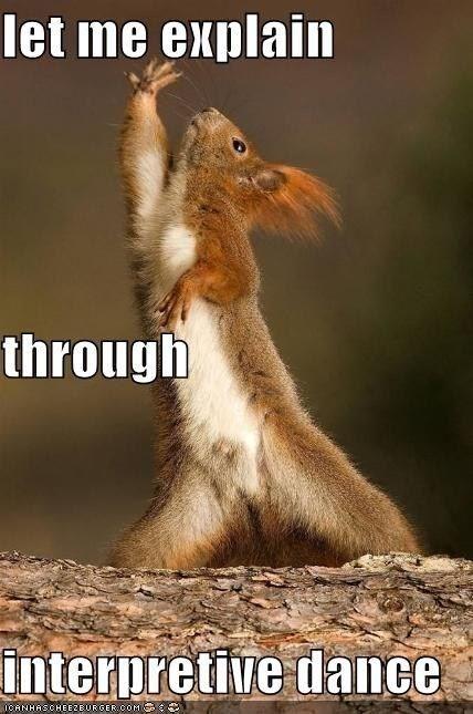 Squirrel - let me explain through interpretive dance ICANHASCHEE2EURGER COM