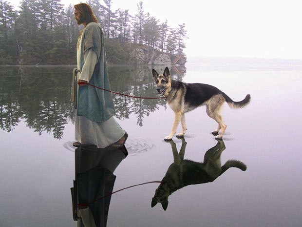 Jesus walking German Shepherd on the ice.