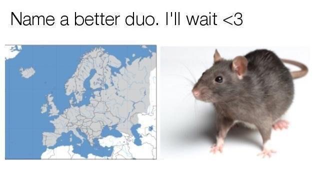 dank meme - Rat - Name a better duo. 'll wait <3