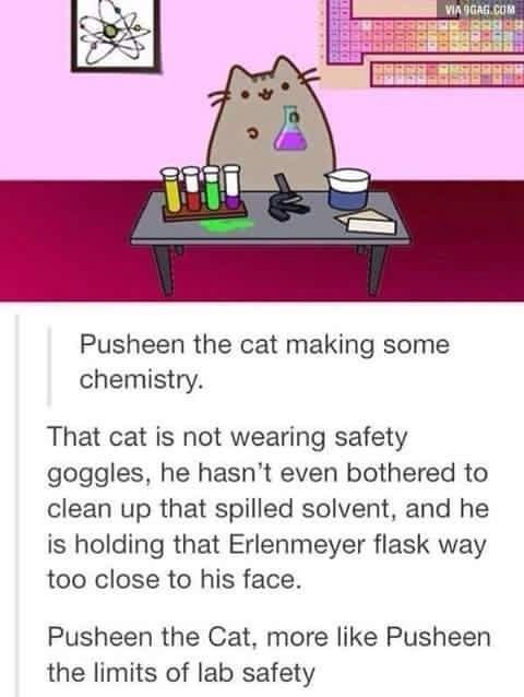 Lab keeper does not approve of Pusheen cat in the lab