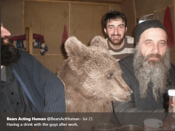Fur - Bears Acting Human @BearsActHuman Jul 21 Having a drink with the guys after work.