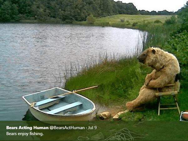Water - Bears Acting Human @BearsActHuman Jul 9 Bears enjoy fishing.