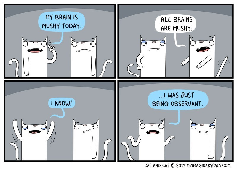 Cartoon - MY BRAIN IS ALL BRAINS MUSHY TODAY ARE MUSHY ...I WAS JUST BEING OBSERVANT I KNOW! 2017 MYIMAGINARYPALS.COM CAT AND CAT