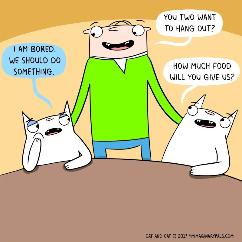 Cartoon - YOU TWO WANT TO HANG OUT? I AM BORED WE SHOULD D0 HOW MUCH FOOD SOMETHING. WILL YOU GIVE US? CAT AND CAT 2017 MYIMAGINARYPALS.COM