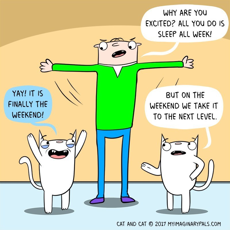 Cartoon - WHY ARE YOU EXCITED? ALL YOu DO IS SLEEP ALL WEEK! YAY! IT IS BUT ON THE FINALLY THE WEEKEND WE TAKE IT WEEKEND! TO THE NEXT LEVEL CAT AND CAT 2017 MYIMAGINARYPALS.COM