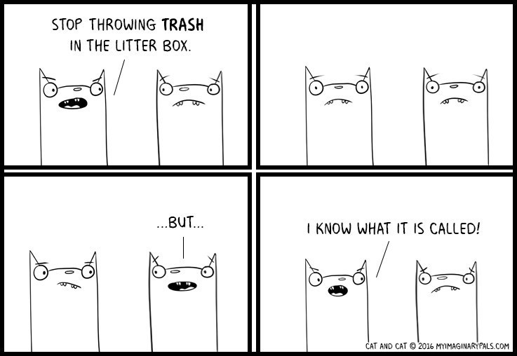Text - STOP THROWING TRASH IN THE LITTER BOX ...BUT. I KNOW WHAT IT IS CALLED! CAT AND CAT 2016 MYIMAGINARYPALS.COM
