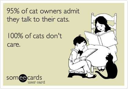 ecards of cats