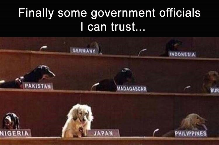 funny picture of a dog parliament with caption that it is the only form of government you can trust.