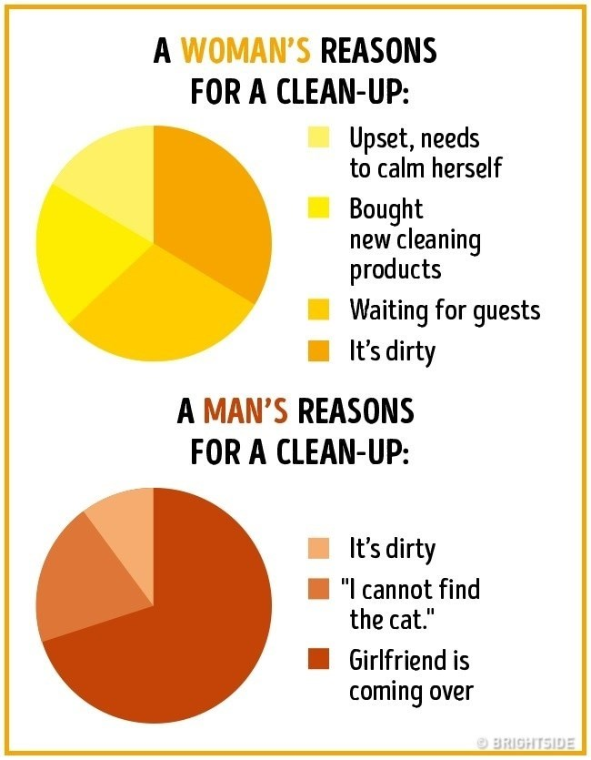 """Text - A WOMAN'S REASONS FOR A CLEAN-UP: Upset, needs to calm herself Bought new cleaning products Waiting for guests It's dirty A MAN'S REASONS FOR A CLEAN-UP: It's dirty """"I cannot find the cat."""" II Girlfriend is coming over BRIGHTSIDE"""