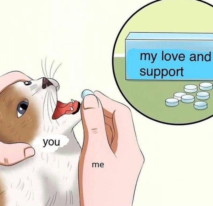 Wholesome meme in feeding cat pills format.