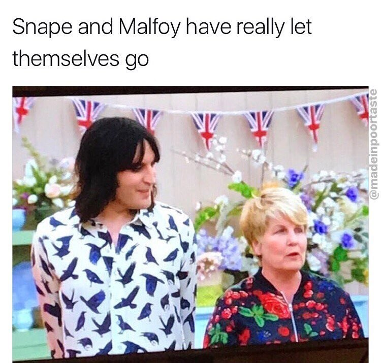 Funny meme about Snape and Malfoy letting themselves go.