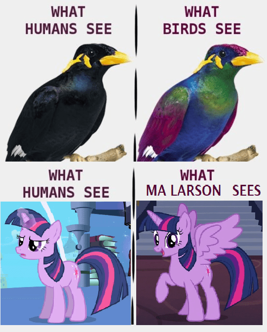 changeling collective twilight sparkle ma larson - 9070217984