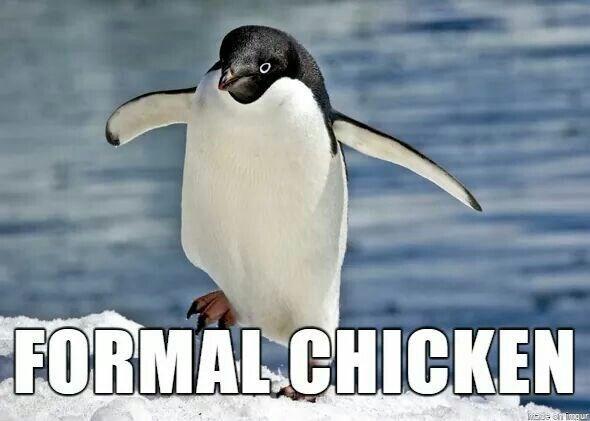 Bird - FORMAL.CHICKEN enimgur