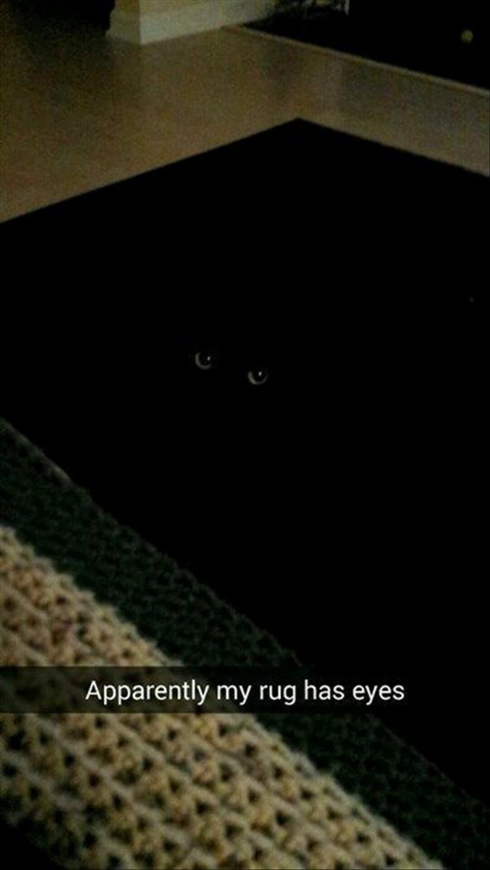 Black - Apparently my rug has eyes