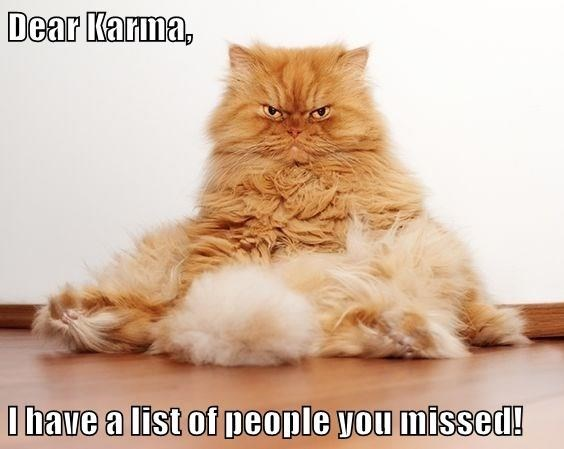 Cat - Dear Karma, I bave a list of people you missed!