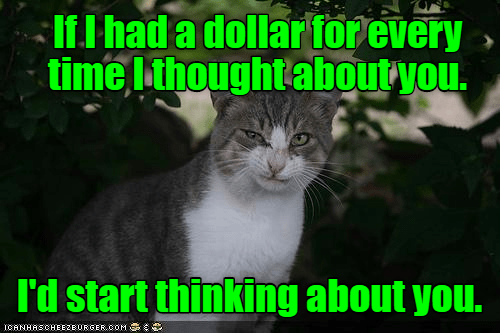 Cat - If I had a dollar for every time Ithought aboutyou. Id start thinking about you. ICANHASCHEE2EURGER cOM
