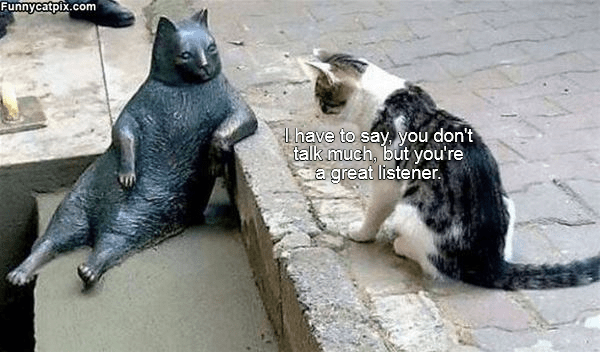 Cat - Funnycatpix.com Lhave to say, you don't talk much, but you're a great listener.