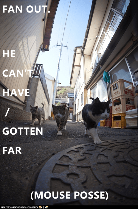 Photography - FAN OUT HE CAN T HAVE FLE GOTTEN FAR (MOUSE POSSE) ICANHASCHEE2EURGER cOM