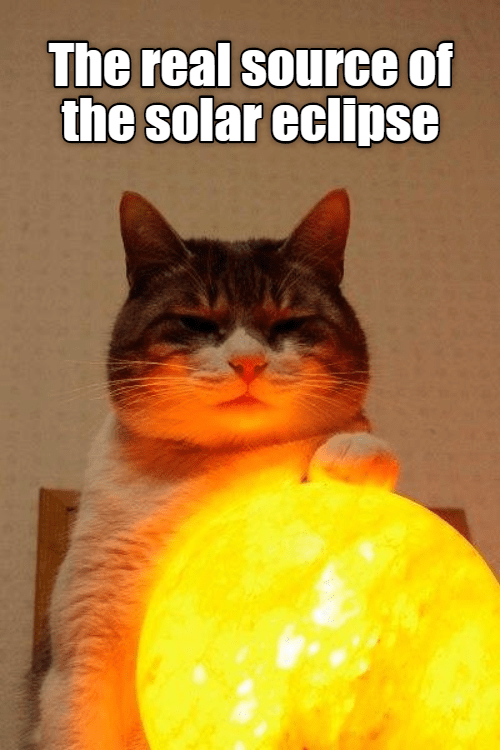 Cat - The real source of the solar eclipse